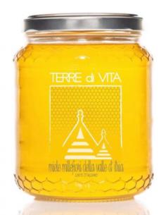 Wildflower honey 110gr
